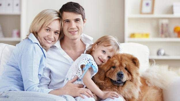 Wills & Trusts dog-young-family Direct Wills Midhurst